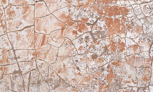 Amazing Plaster Texture