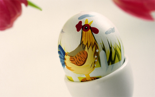 Easter chicken egg wallpapers