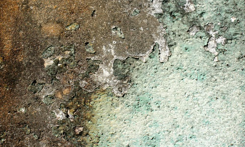 Pack of Dirty Wall Texture