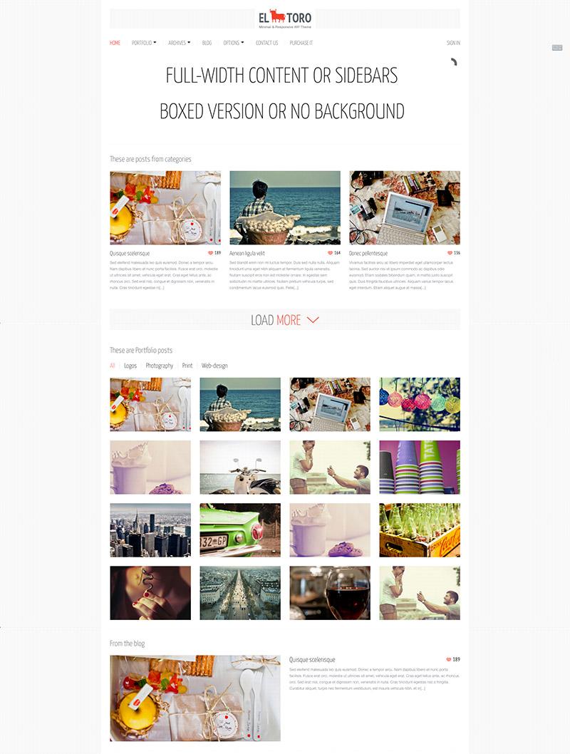 premium portfolio theme