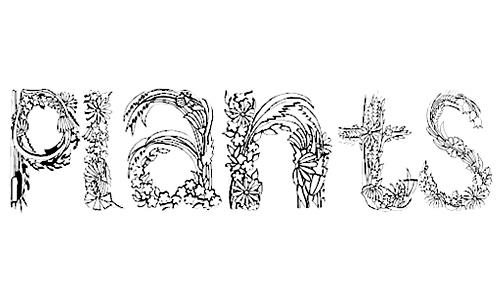 PlantsLetters font