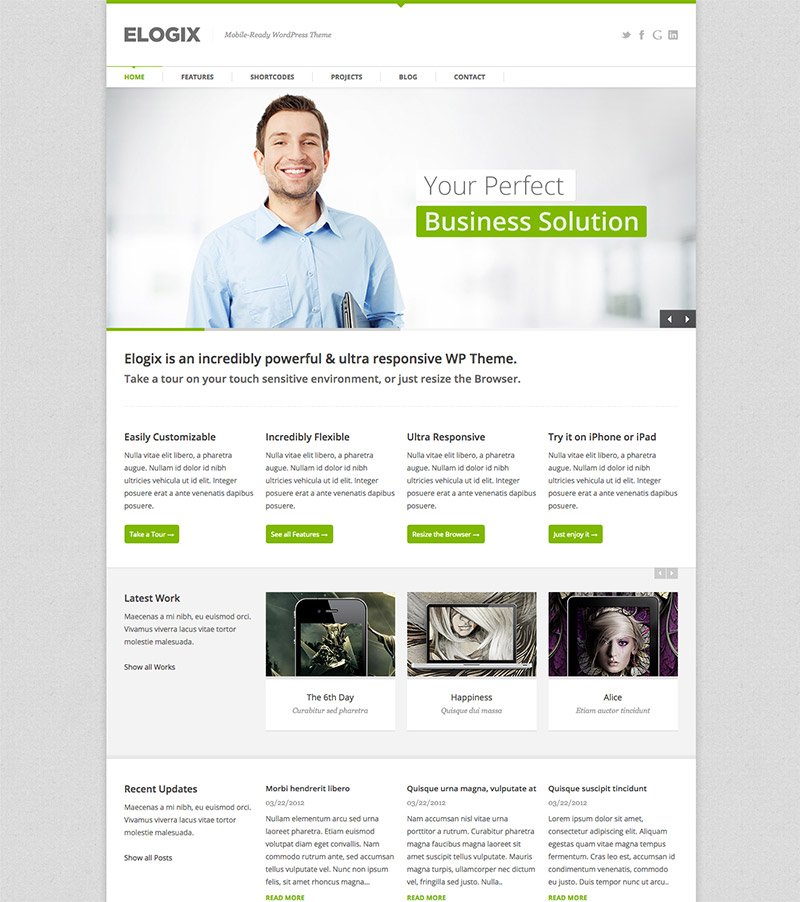 customizable wordpress premium