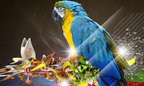 Cool Parrot Wallpaper