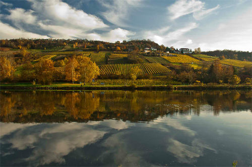 Mosel river side