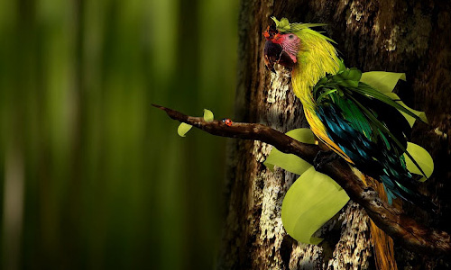 Intriguing Parrot Wallpaper
