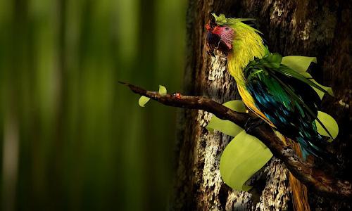 Intriguing Parrot Wallpaper