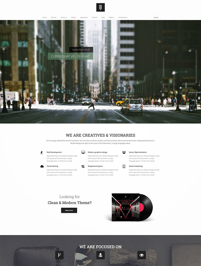 company theme website