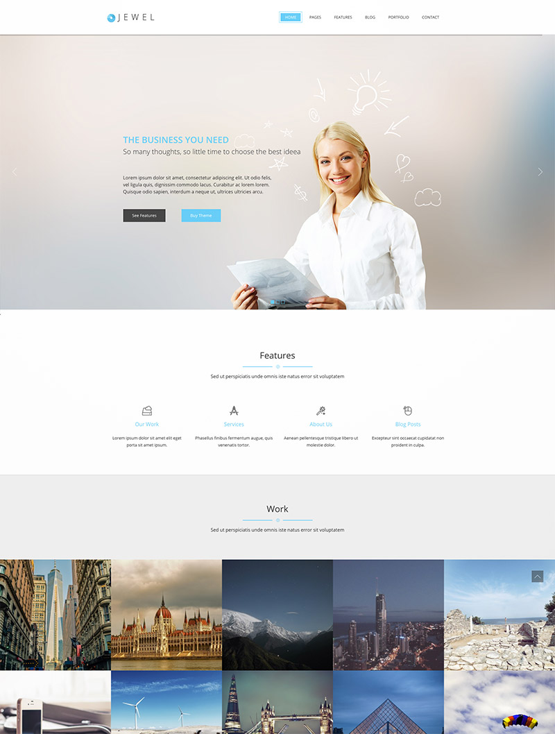 professional wordpress website