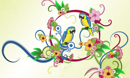 So Cute Parrot Wallpaper