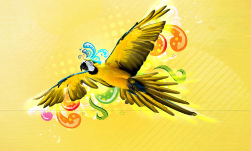 So Nice Parrot Wallpaper