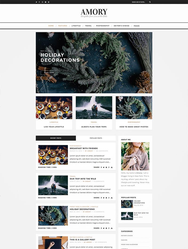 premium wordpress blog