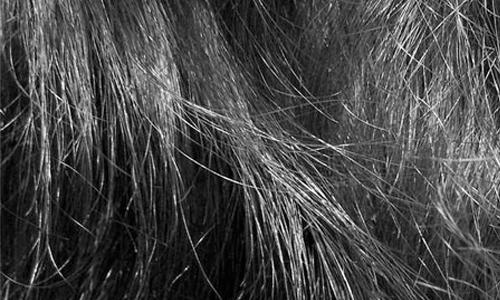 Hair Texture III