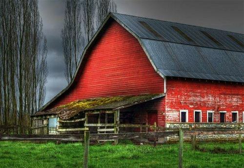 Barn Series 1