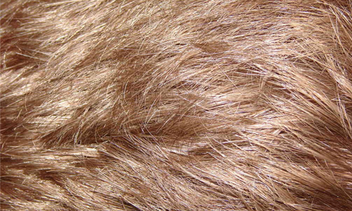 Dark Blonde Hair Texture