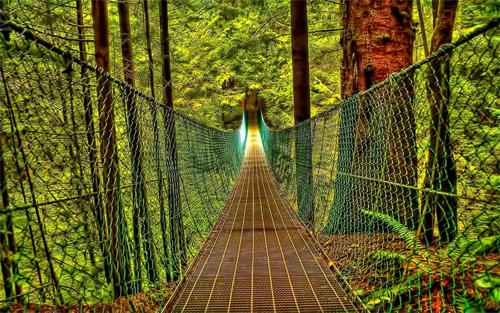 Bridge Of Destiny