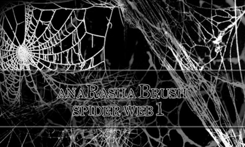 spider web brush 1