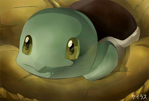 Pokemon Squirtle Silvestre