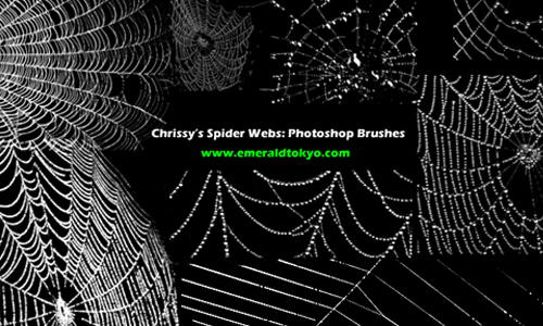 Chrissy's Spdr Web PS Brushes