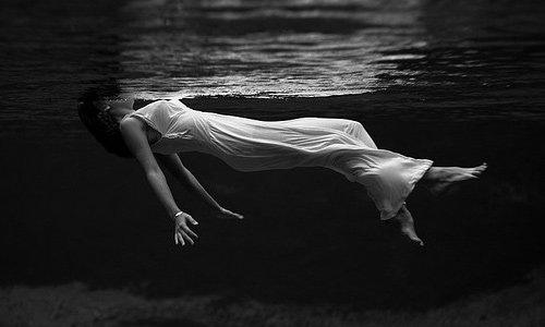 Tips For Stunning Underwater Photography Naldz Graphics - Amazing black white underwater photography