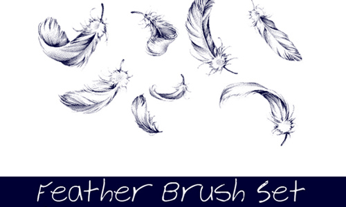 Feather Brush Set 1