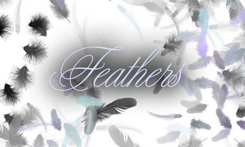 30 Sets of Soft Feather Brushes | Naldz Graphics