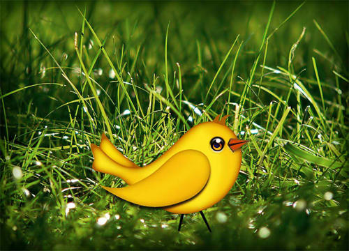 Let's create a cute Bird vector in Photo shop