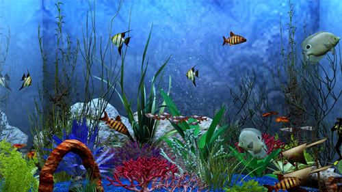 Aquarium View wallpapers