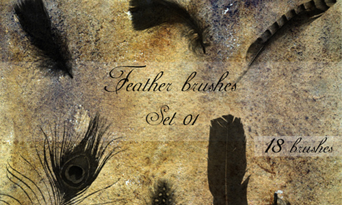 Feather brushes - set 01