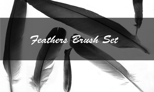 Feather Brush Set