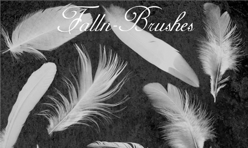 Feathers Brushes Set 1