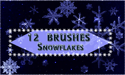 snowflakes brush set