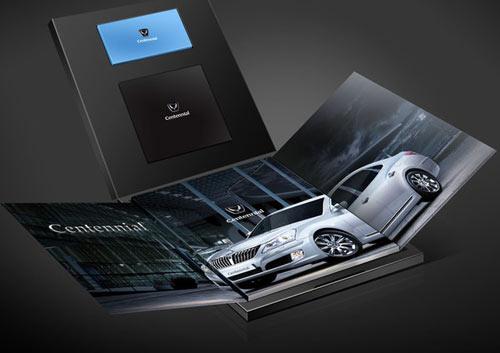 Hyundai VIP Brochure