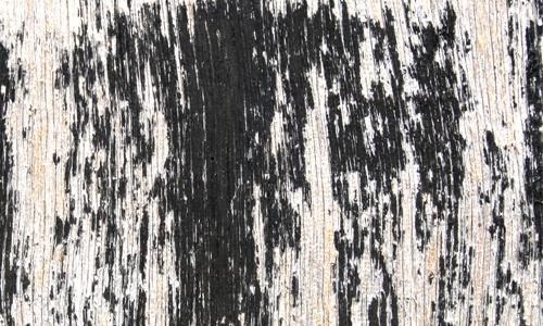 Plywood texture 1