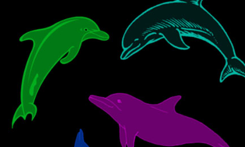 Cute Dolphin Brushes
