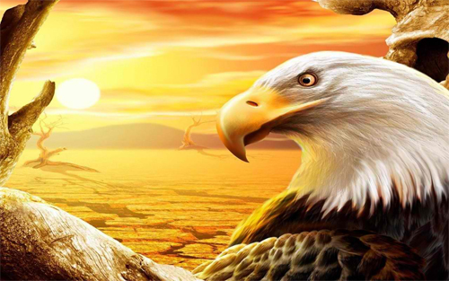 the Eagle wallpaper