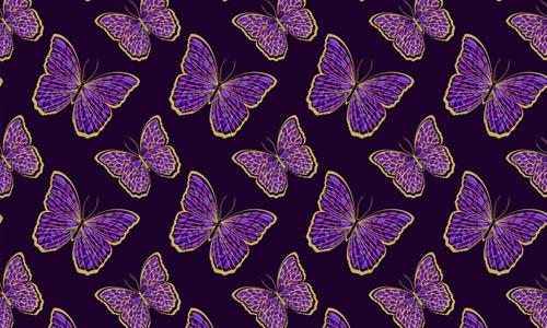 CloissoneButterfly