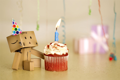 Danbo photography cute birthday