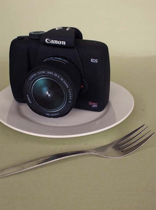 Canon camera unusual cake design cool
