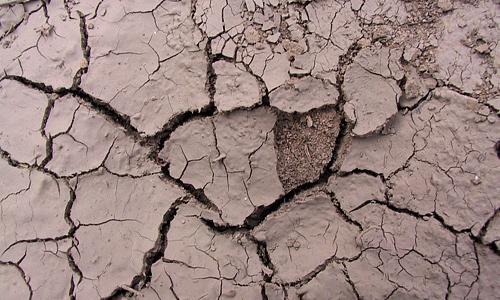 Crack brown mud texture