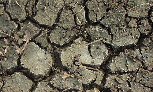 Dirty crack mud texture