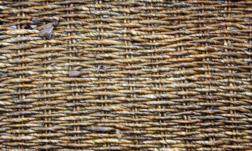 Basket 2 texture