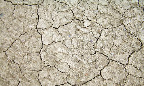 White crack mud texture