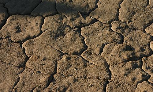 Brown mushy crack mud texture