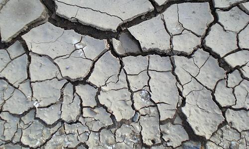 White crack dry mud texture