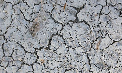 Dirty grey crack mud texture