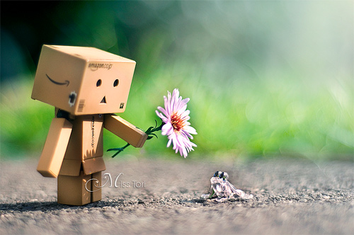 For you frog flower danbo photography cute