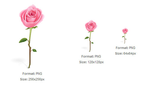 Pink Rose with Stem icon