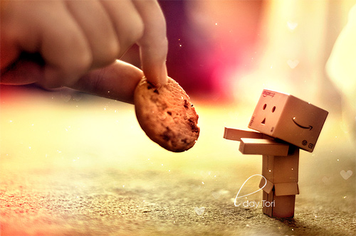 Gimmie cookie danbo photography cute
