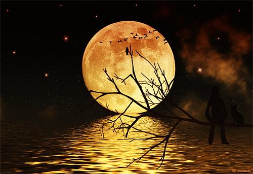 Looking bright cool moon wallpaper