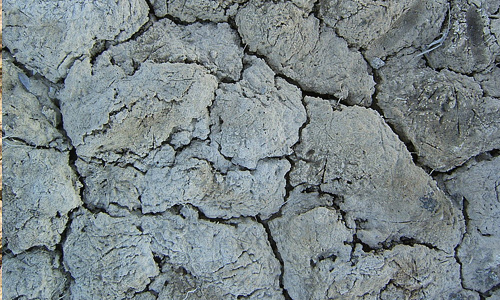 White crack mud texture